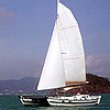See Details of Sailing Catamaran Tiki 38