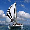 See Details of Sailing Catamaran Nakamal