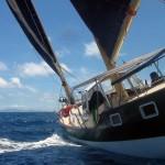 Half Day Yacht Charters - SY Freedom Fargo