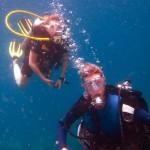 sail-dive-charter-kohtao-09