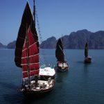 Sailing Junks under Sail